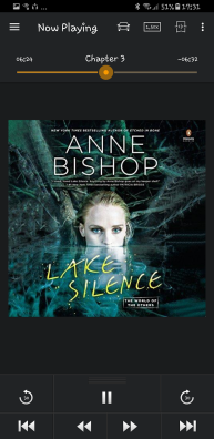 The Others #6: LAKE SILENCE audiobook
