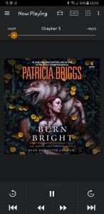 BURN BRIGHT by Patricia Briggs (audiobook)